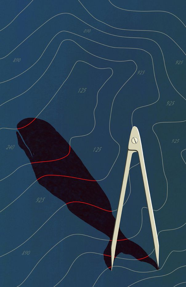 symbolism and foreshadowing in herman melvilles moby dick essay A character is usually but not always a person (eg in jack london´s call of the wild, the protagonist is a devoted sled dog in herman melvilles´s moby-dick, the antagonist is an unfathomable whale.
