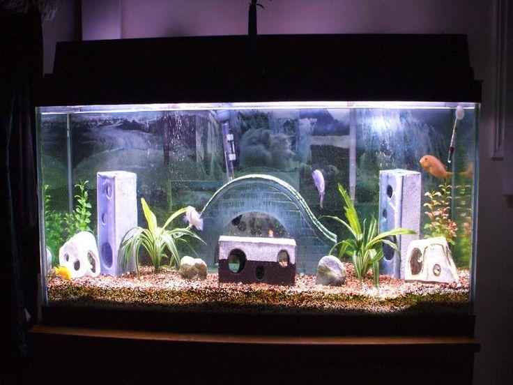 unique caving aquarium decoration themes - Freshwater Aquarium Design Ideas