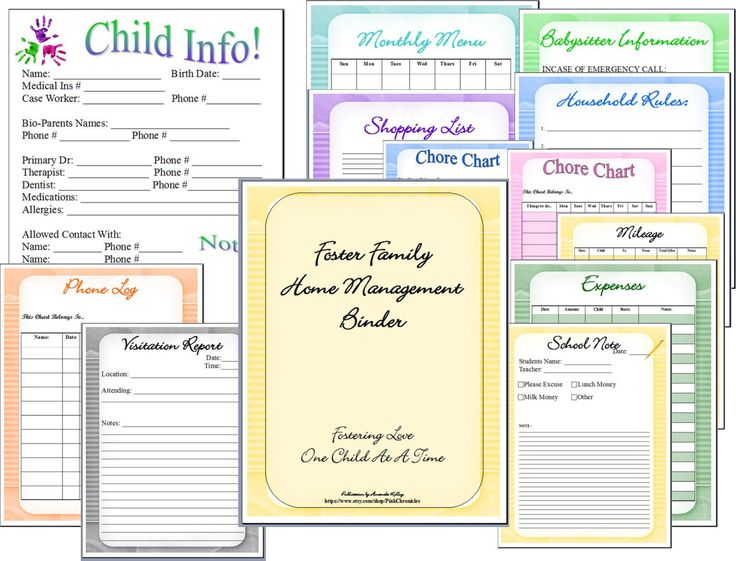 Foster Care Family Home Management Binder by PinkChronicles