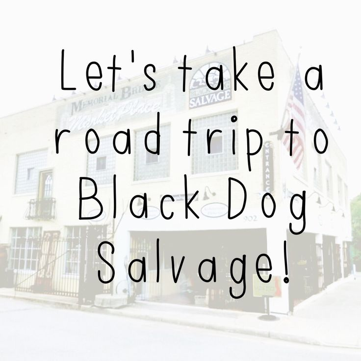 If you were to take a road trip to Black Dog Salvage in Roanoke, Va, who would you bring with you? Share this pin with them!