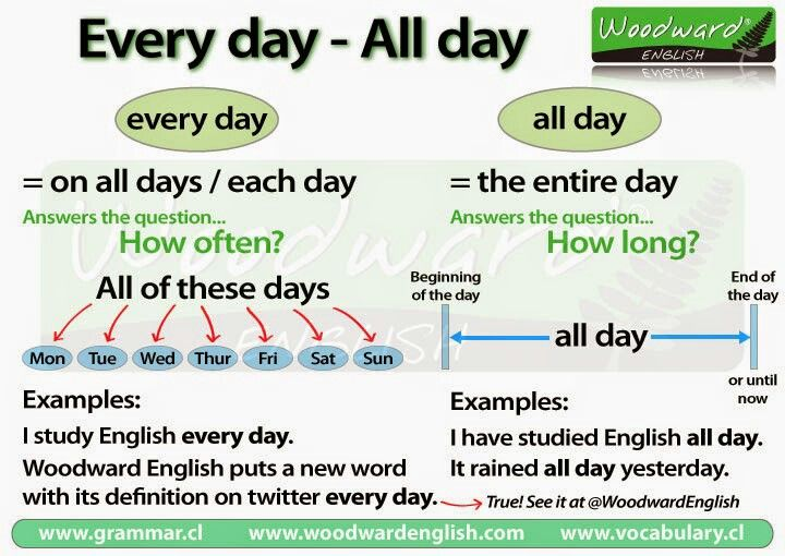 Every day -all day
