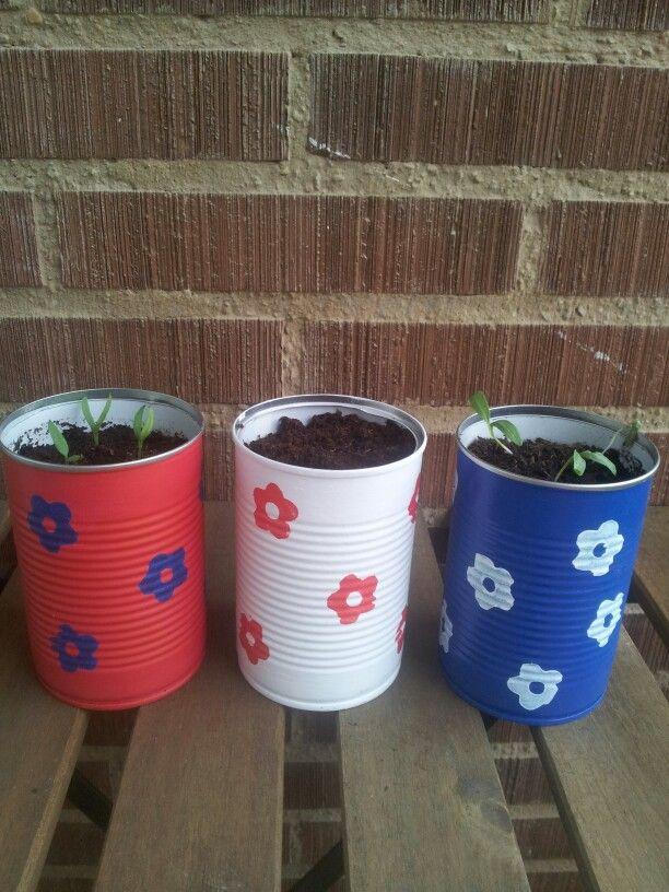 Latas decoradas para mis pequeñas plantas
