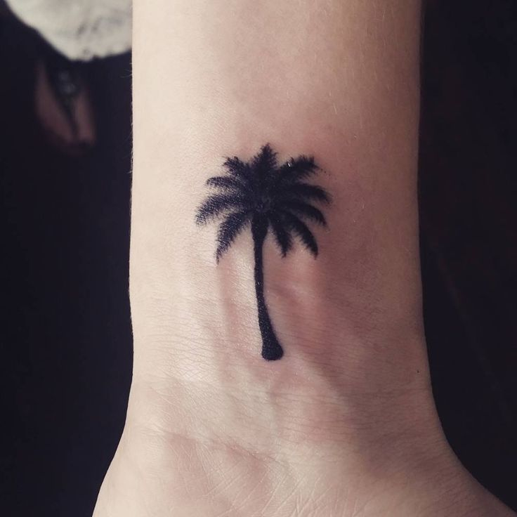 260 Best Tattoos I Might Want Images On Pinterest: 37 Best Small Palm Tree Tattoos Images On Pinterest