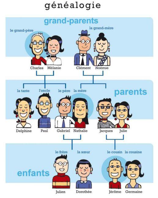 Vocabulaire de la famille. OBSERVATION IMPORTANTE: on doit considérer que plus d'enfants vivant en famille recomposée aujourd'hui, il y a aussi beaucoup d'autres caractéristiques que n'aparaissent pas à cette image, comme les parents homosexuelles.