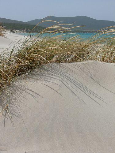 Porto Pino dunes - Sardinia. Dune di Porto Pino in Sardinia Italy