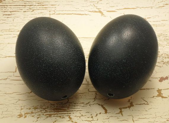 Emu Eggs Two for One Sale  Egg Art Supplies by NatalieOrigStudio, $15.00