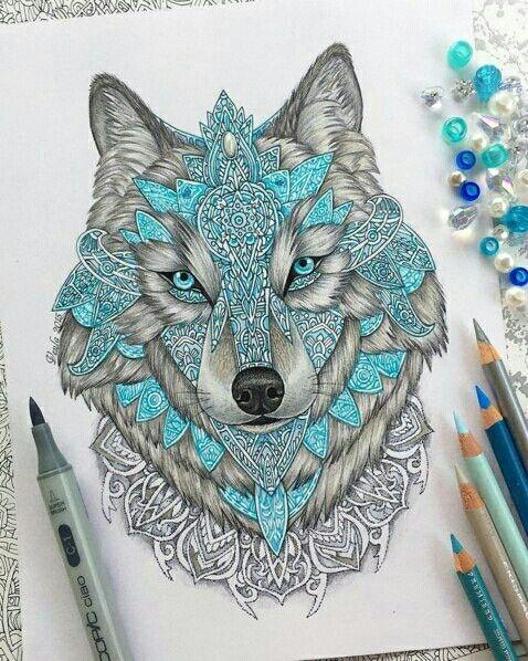 Волк красавец!!