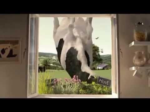 Cadbury Dairy Milk Bubbly -  Now in Mint!