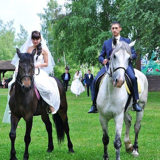 Instagram media by alicha_gritsai - #нашасвадьба #прекрасные #воспоминания #инстамама  Сегодня с мужем вспомнили как катались на лошадях на свадьбе. Вспоминаю как многие меня осудили что я в свадебном платье залезла на лошадь. Ну а что такого?! Один раз замуж выхожу,нужно воплотить все мечты. Тем более я умею ездить верхом. Да и воспоминания замечательные. #лошади #ездаверхом #гало #галоп #свадьба #свадебное #вотоночудо