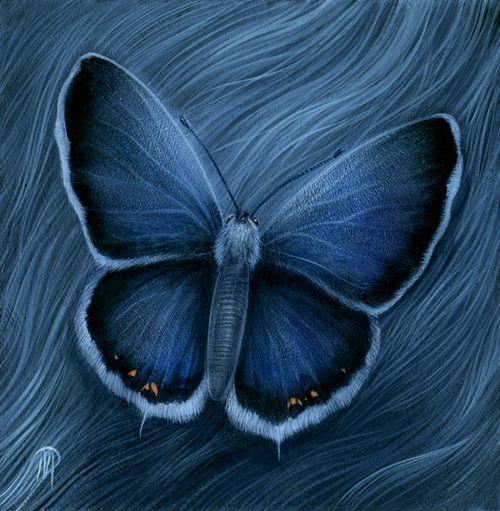 209 best images about color indigo blue azul indigo on pinterest indigo indigo dye and. Black Bedroom Furniture Sets. Home Design Ideas