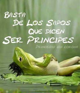 Mi esencia y mi vida: PRINCIPES Y PRINCESAS..........O.......SAPOS Y RANAS