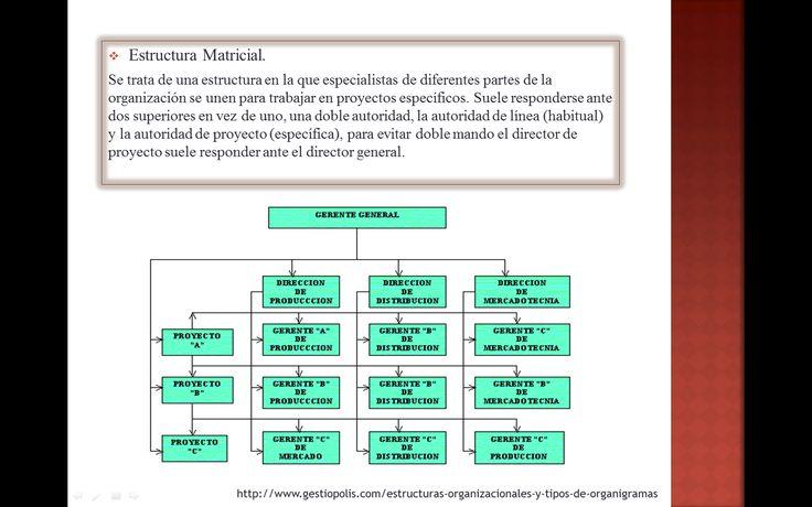 tipos de organigramas: estructura matricial