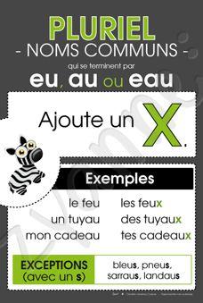 Pluriel - Noms communs en « eu», « au » ou « eau »