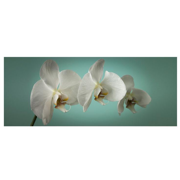 Graham & Brown Teal Orchid printed canvas wall art- at Debenhams.com