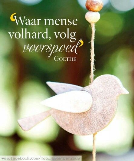 "Afrikaans...""Prosperity follows those who perservere and do not give up..."" - Goethe"