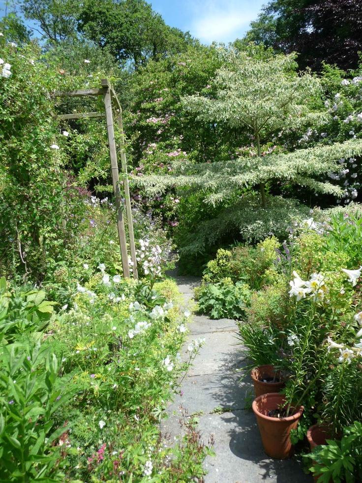 Carol S Garden: Carol Klein's Garden, Devon