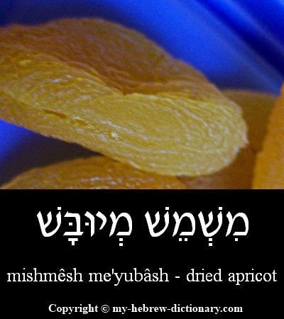 "How to say ""Apricot"" in Hebrew. Click here to hear it pronounced by an Israeli: http://www.my-hebrew-dictionary.com/apricot.php"