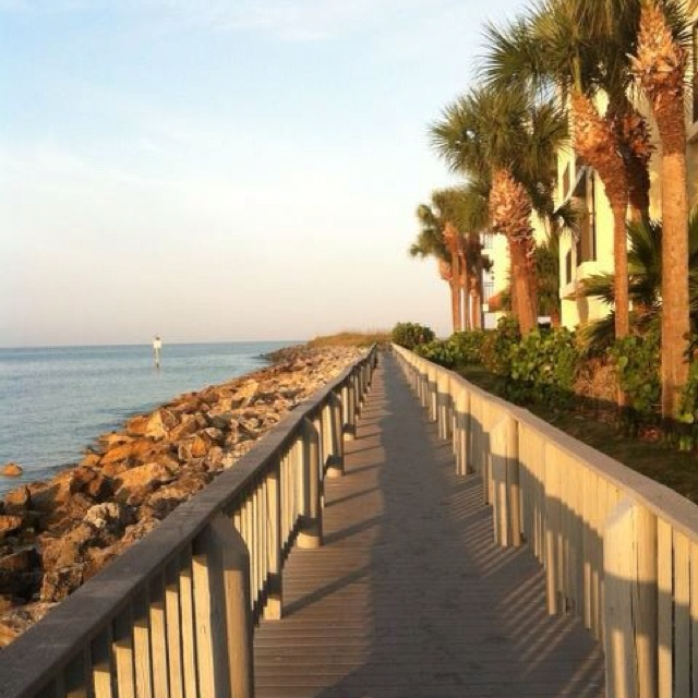 how to become an occupational therapist in florida
