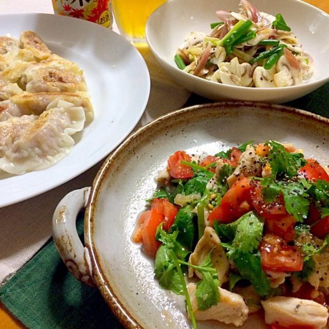 生マッシュルームのサラダはすっかり定番の一品になりました  ビールにも白ワインにも日本酒にも合います✨ - 57件のもぐもぐ - 鶏むね肉とトマトのパクチーサラダ、トミーサクさんの生マッシュルームとみょうがのサラダ・リピリピ( ๑॔˃ ॢ‧̫˂ॢ).*˚‧♡ 焼き餃子 by reirei7