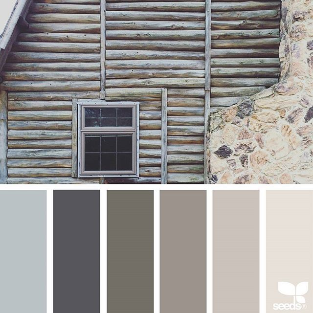 a second incredible inspiration image today from @suertj ... { color dwell } ... thank you, Sue, for another incredible #SeedsColor image share!