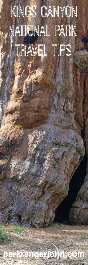 Best 25 Sequoia National Park Ideas On Pinterest