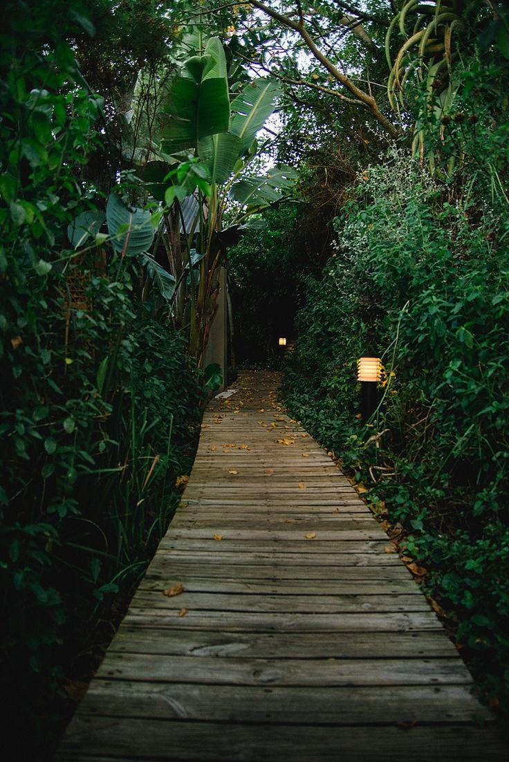 Paradise in Plettenberg Bay. Emily Moon River Lodge. Garden Route accommodation. Plettenberg Bay accommodation. Accommodation in Plettenberg Bay.