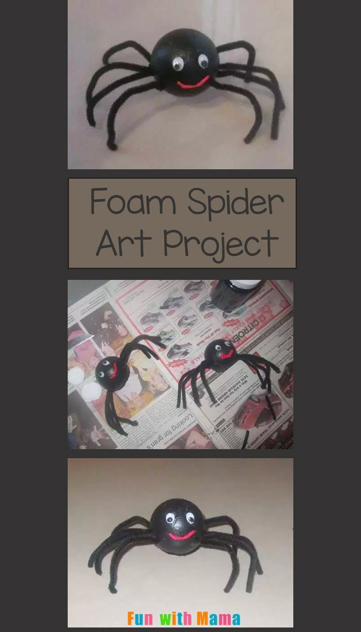 Insect And Spider Art Projects