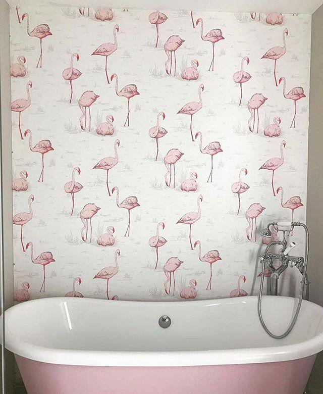 Removable Wallpaper Australia Wallpaper Walls Decorative Wallpaper Bathroom Wallpaper Flamingo Wallpaper Bathroom Feature Wall