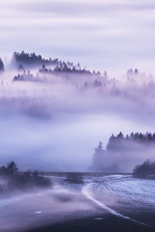 *INTO THE MIST (The way to nowhere, Slovakia, by Lubomir Drapal, on 500px.- Trimming)