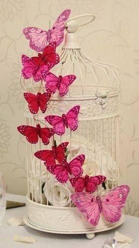 Gaiolas, borboletas e rosas brancas