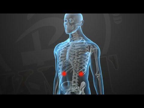 KRAV MAGA TRAINING • Knockout Pressure Points (part 3 of 5) - YouTube