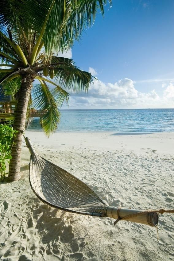 I'm drinking mango juice right now. Imagining I'm laying right there on that beach, listening to the waves from the ocean & enjoying that ocean breeze. See me? (I have an active imagination sometimes.)