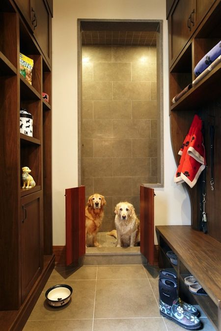 31fa15eb52b15f72de96e835306f341a--dog-stuff-dog-rooms.jpg