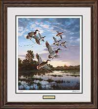 Ducks Art; LaGrue Woodies-Wood Ducks Print by Scot Storm   Wild Wings