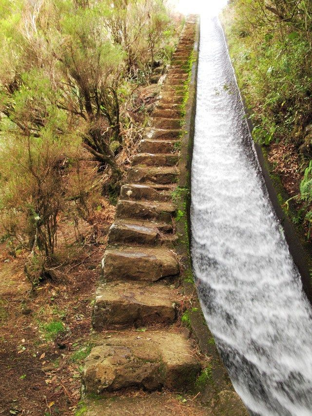 Treppe der Rosmarin-Levada auf Madeira | Waldspaziergang.org