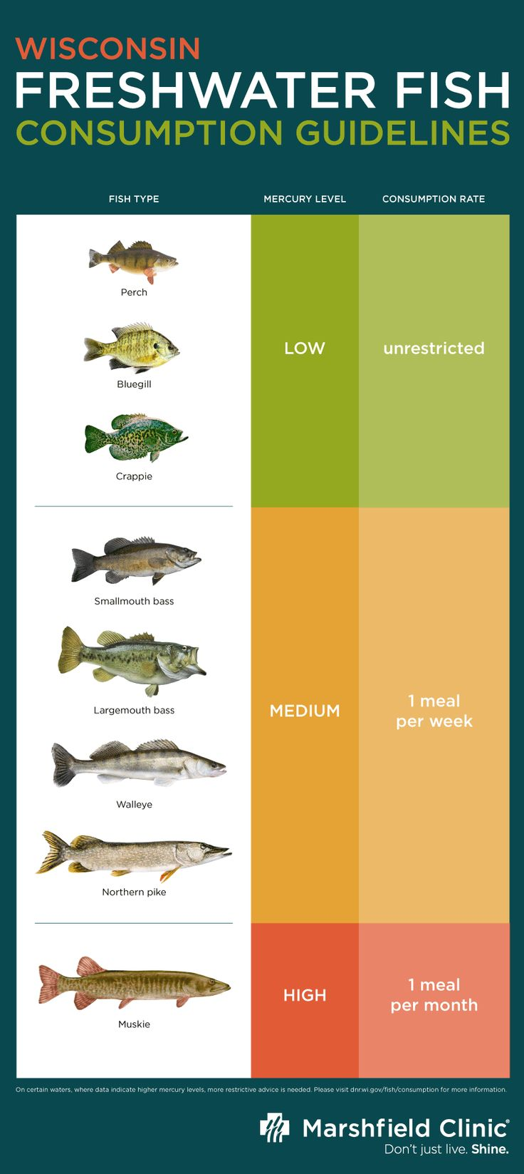 Freshwater fish health benefits - Mercury Levels In Freshwater Fish