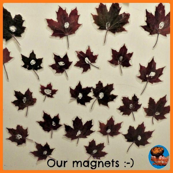Real leaf magnets