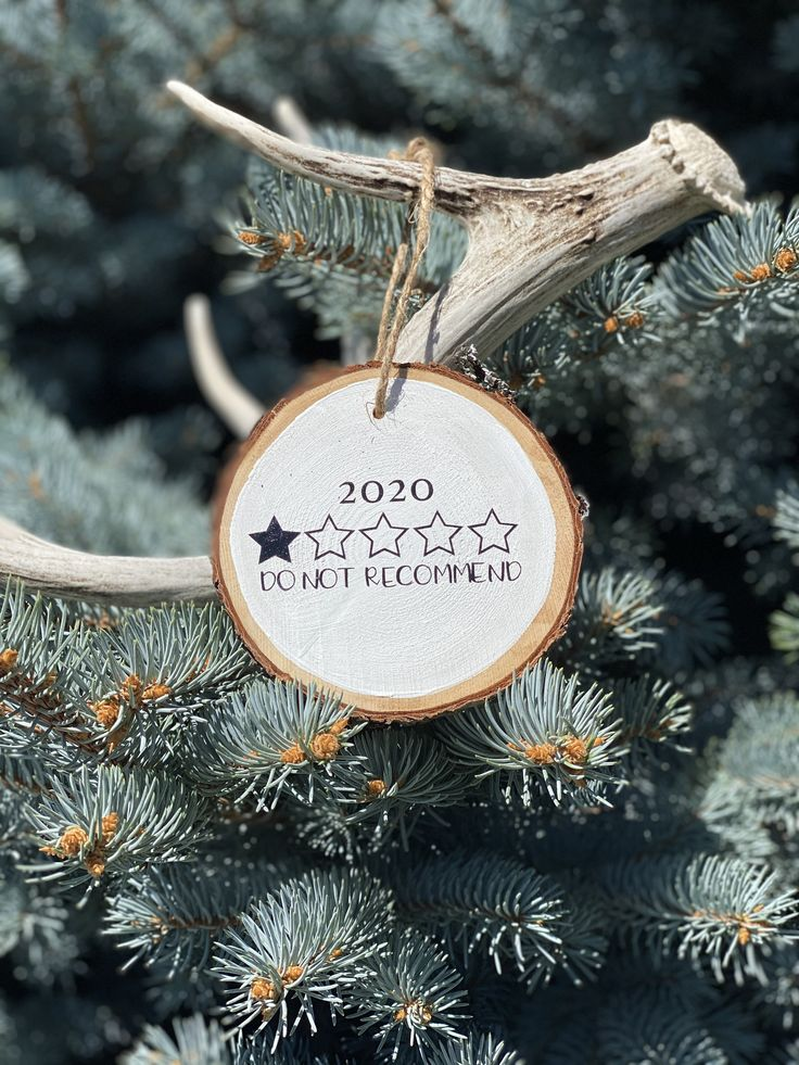 2020 Do Not Wood Slice Decor Wood Slice Ornament