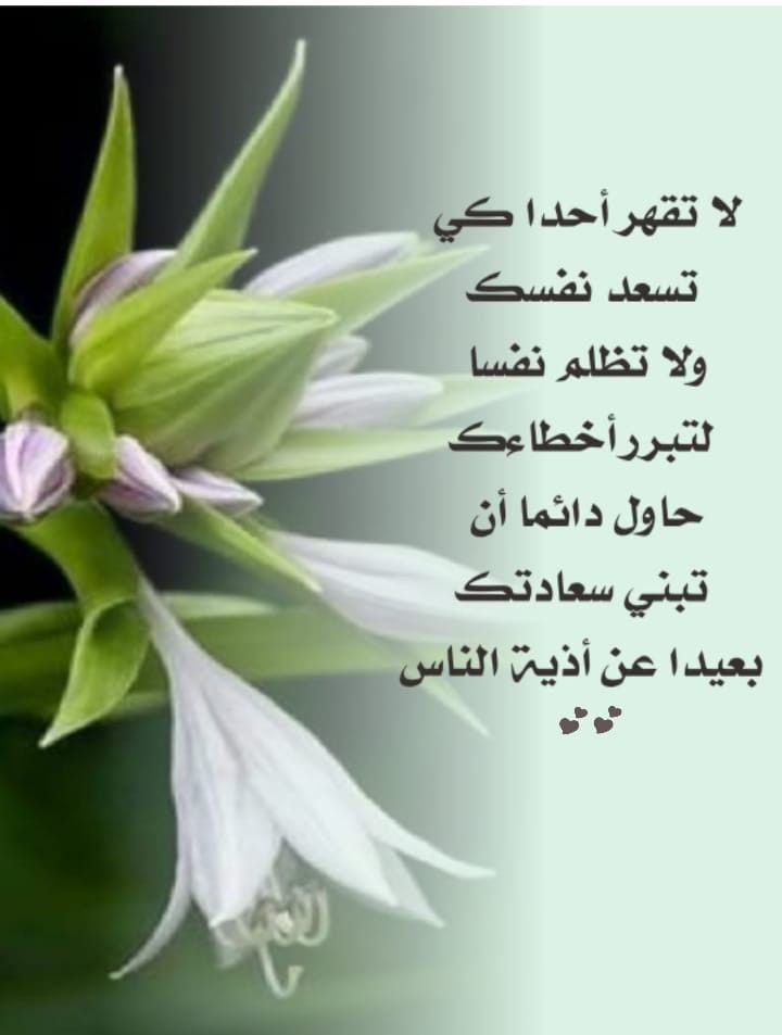 Pin By Eman Duniya On عربي رسائل من تصميمي Plants