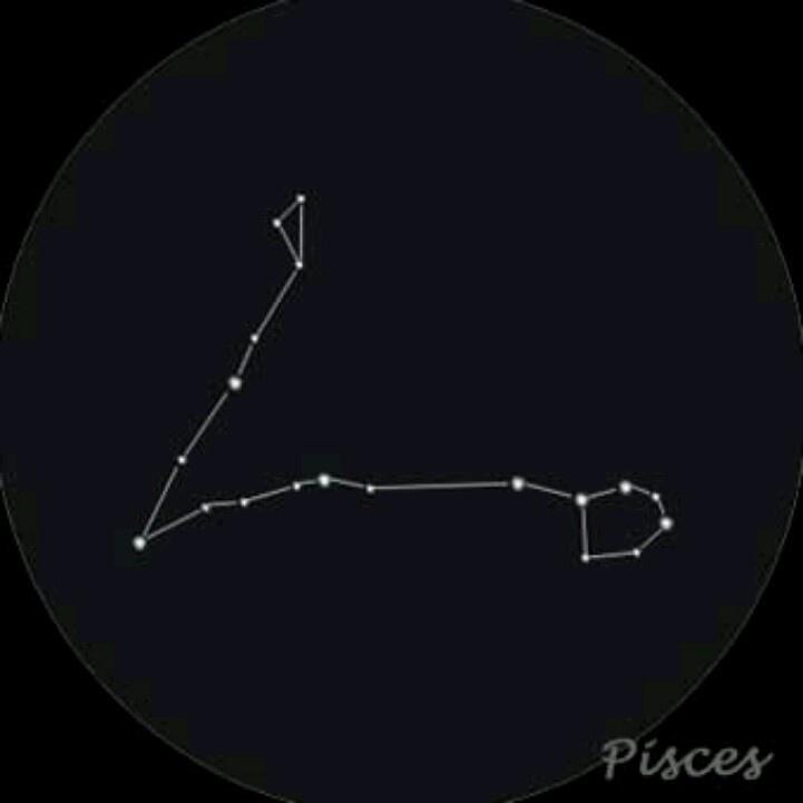 Pisces constellation... Simple tattoo idea