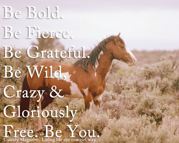 Be Bold Be Fierce Be Grateful Be Wild Crazy And