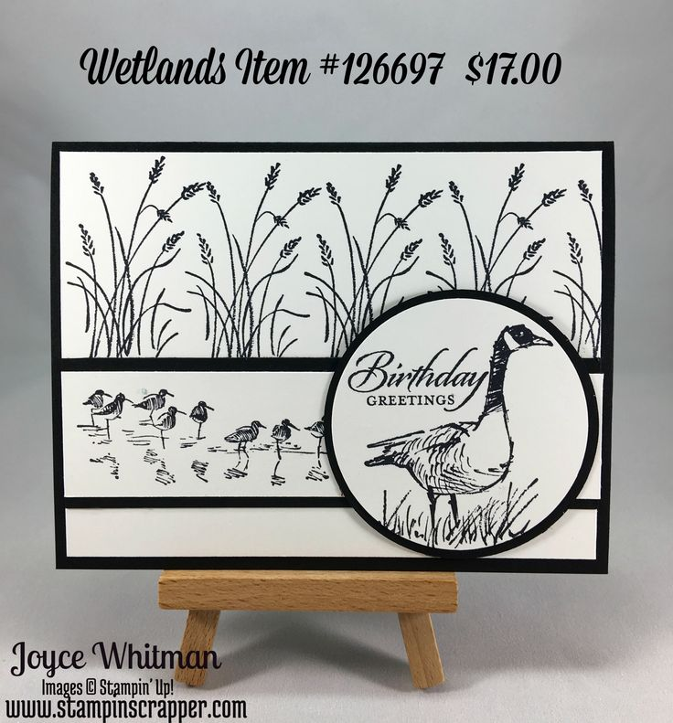 Masculine Birthday card using the Wetlands stamp set from Stampin' Up!