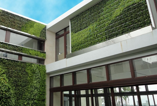 Who says you need a wide space for your garden? A vertical greenery on your wall might be the answer you're looking for. Save environment, be green.