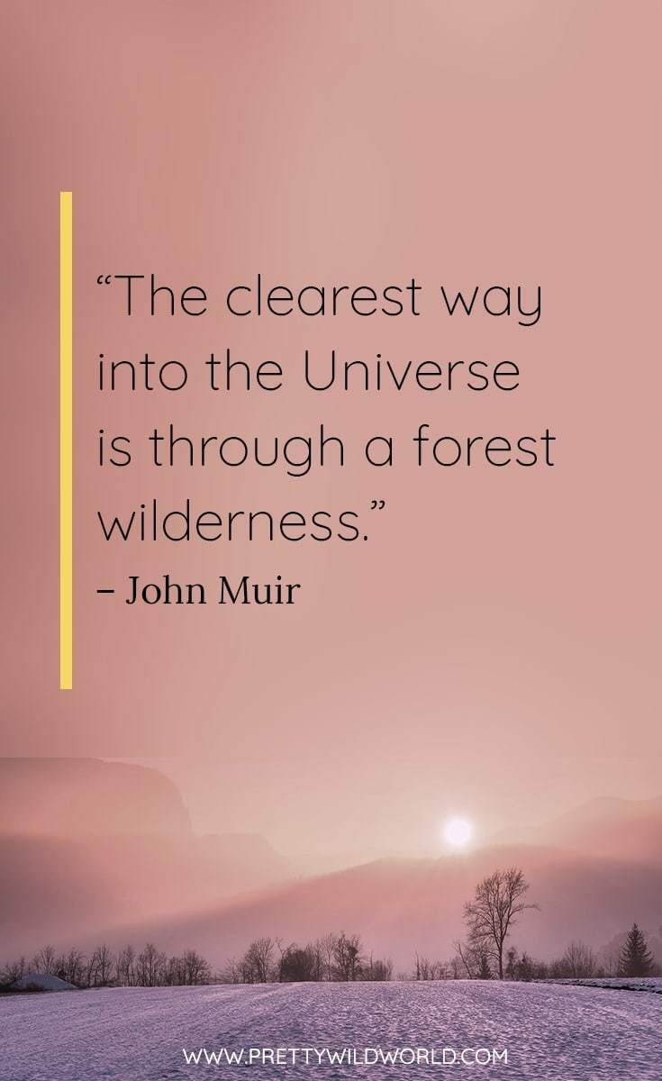 Best Nature Quotes Top 35 Quotes About Nature And Life Short Nature Quotes Nature Quotes Adventure Nature Quotes