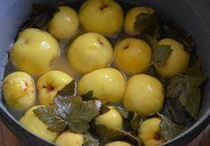 Моченые яблоки! Самые лучшие рецепты!Существует три вида мочения – сахарное, кислое и простое.Очень важно подготовить для вымачивания подходящие яблоки. Наиболее подходящими для мочения являются яблок…