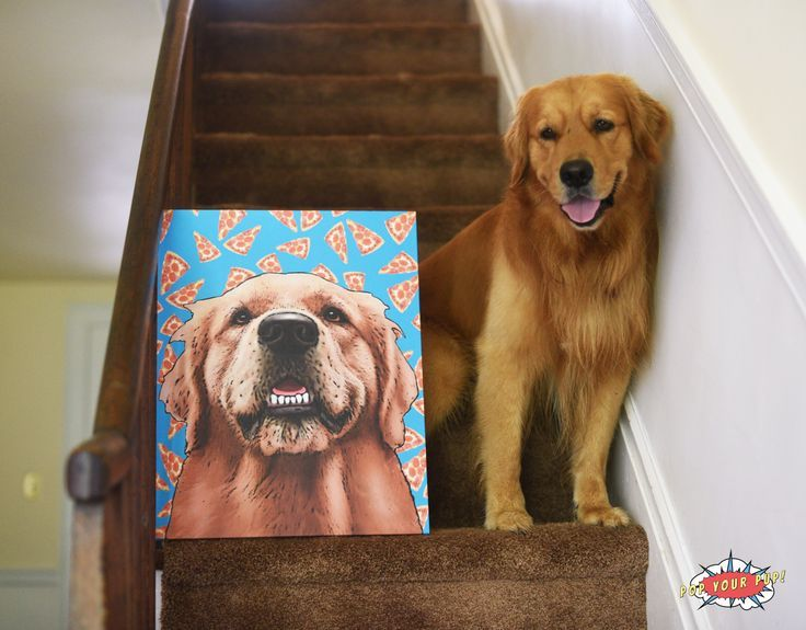 Looking For Cute Golden Retriever Gift Ideas For The Dog Lover In
