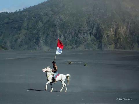 Dirgahayu Indonesiaku By : Tri Handoko