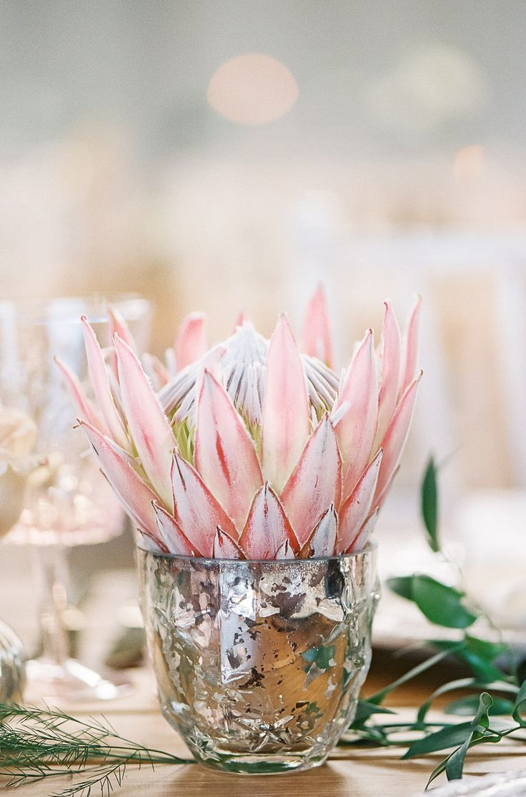#crowedding The Garden Flower Company Protea floral arrangements - Rose gold & blush pink outdoor wedding at Elmore Court. Anna Campbell gown, Cad & The Dandy Suit. Photography - Ann-Kathrin Koch. Film - WE ARE THE CLARKES.