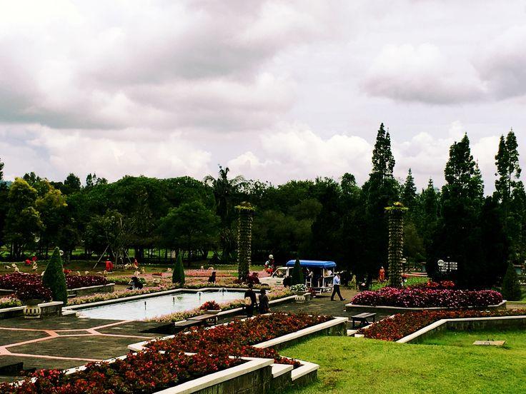 Taman bunga nasional cipanas