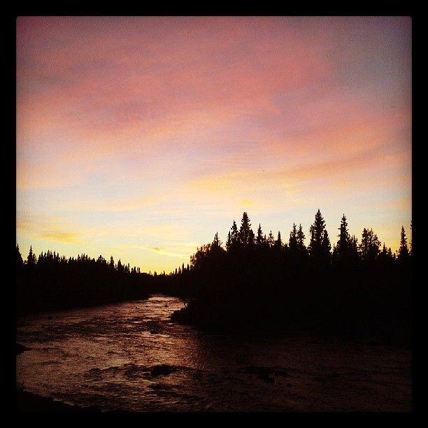Giertsbäcken, along Vindelalven, a great little river with big trout and grayling. Sorsele in Swedish Lapland #flyfishing #sorsele